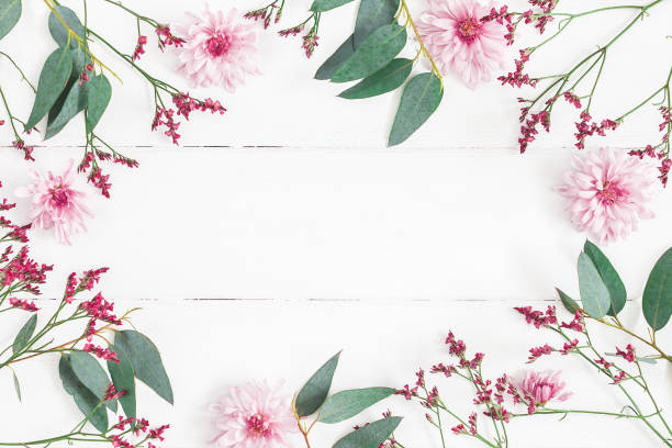 Flowers composition on white wooden background. Flat lay, top view stock photo