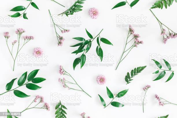 Flowers composition pattern made of pink flowers on white background picture id1156044648?b=1&k=6&m=1156044648&s=612x612&h=pxa7 o7nawq zq qx60mie1 q2xkmjzodoejzx4hi1i=