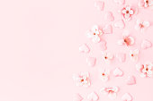 istock Flowers composition. Pink flowers hearts on pastel pink background. Flat lay, top view, copy space 1243077957