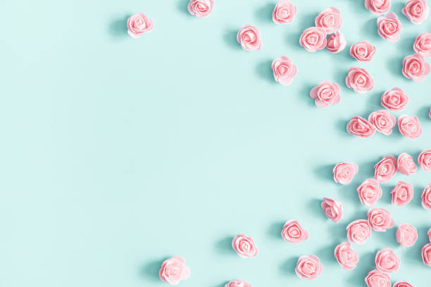 Flowers composition pink rose flowers on pastel blue background day picture id1128621856?b=1&k=6&m=1128621856&s=612x612&w=0&h=3cabsmnmo67ijqsu5timzs7twxbwhk7raesyq izz8i=