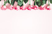 istock Flowers composition. Pink rose flowers on pastel pink background. Flat lay, top view, copy space 1138229631