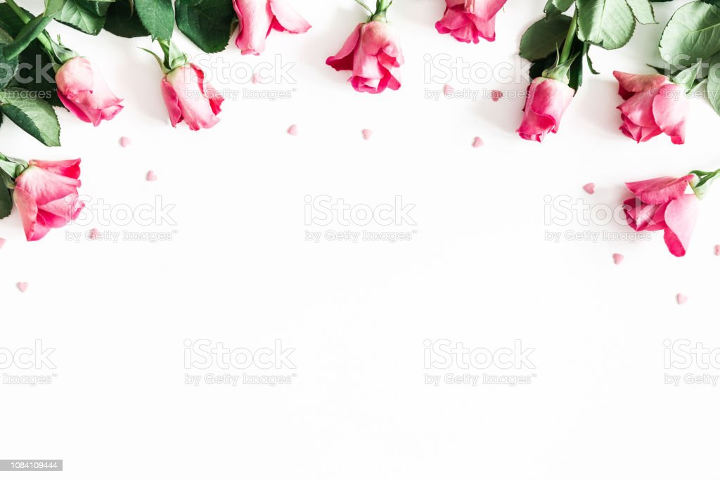 Flowers composition. Pink rose flowers on white background. Flat lay,...