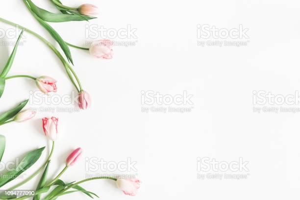 Flowers composition pink tulip flowers on white background valentines picture id1094777090?b=1&k=6&m=1094777090&s=612x612&h=cjbdd9buim3blschl g dddhqdvvgfocgvyxcqbl9ro=