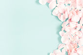 istock Flowers composition. Rose flower petals on pastel blue background. Valentine's Day, Mother's Day concept. Flat lay, top view, copy space 1126038378