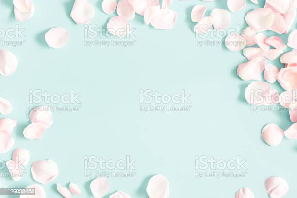 Flowers composition rose flower petals on pastel blue background day picture id1126038458?b=1&k=6&m=1126038458&s=612x612&h=df93agz7vkf lsxwlq1wyhkm2aiekm6znhswbuzbbxu=