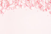 istock Flowers composition. Rose flower petals on pastel pink background. Valentine's Day, Mother's Day concept. Flat lay, top view, copy space 1125610104