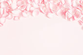 istock Flowers composition. Rose flower petals on pastel pink background. Valentines day, mothers day, womens day, wedding concept. Flat lay, top view, copy space 1127474902