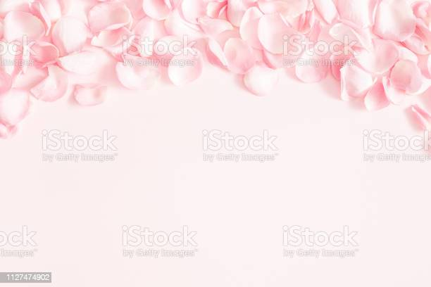 Flowers composition rose flower petals on pastel pink background day picture id1127474902?b=1&k=6&m=1127474902&s=612x612&h=dykiyvp16anq0tfdvjhifa3sash3beit wedpd apye=