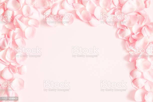 Flowers composition rose flower petals on pastel pink background day picture id1127559900?b=1&k=6&m=1127559900&s=612x612&h=5csyachfj7tg9akatdk7qllbipk5tl3ahuxzfa11lkk=