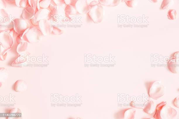Flowers composition rose flower petals on pastel pink background day picture id1130755772?b=1&k=6&m=1130755772&s=612x612&h=p0okf6 yyfmy4bl 4fj1gyf4v2vs6cuaazwalek7clg=