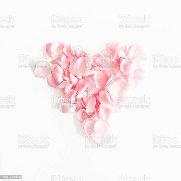Flowers composition rose flower petals on white background valentines picture id1091715476?b=1&k=6&m=1091715476&s=612x612&h=vczljk tn2aqtmeoh 3f0k6krdw 8sidrttgphall c=