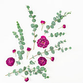 istock Flowers composition. Rose flowers and eucalyptus branches. Flat lay, top view 830683062