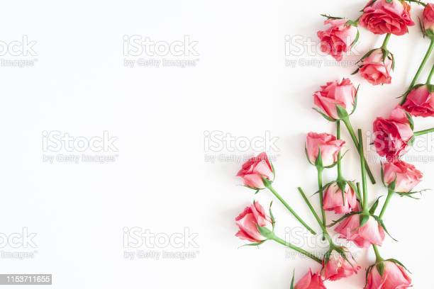 Flowers composition rose flowers on white background flat lay top picture id1153711655?b=1&k=6&m=1153711655&s=612x612&h=qsswis5x0r4nschcwm4pha7k0xzw9qo3lxatvek74ci=