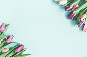 istock Flowers composition. Tulip flowers on pastel blue background. Valentines day, mothers day, womens day, spring concept. Flat lay, top view, copy space 1129296818