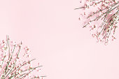istock Flowers composition. White flowers on pastel pink background. Spring, easter concept. Flat lay, top view, copy space 1144060999