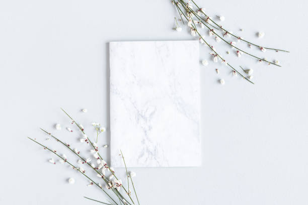 Flowers composition. White flowers, paper blank on gray background. Spring concept. Flat lay, top view, copy space stock photo