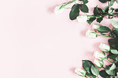 istock Flowers composition. White rose flowers on pastel pink background. Valentines day, mothers day, womens day concept. Flat lay, top view, copy space 1136116415