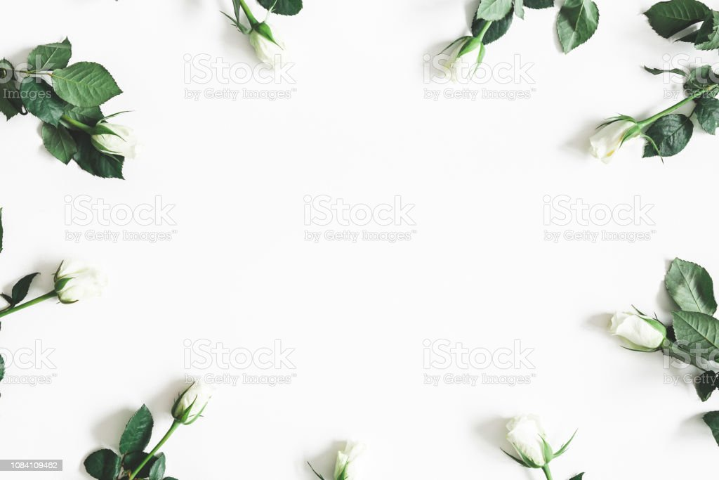 Flowers composition. White rose flowers on white background. Flat...
