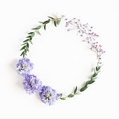 istock Flowers composition. Wreath made of gypsophila flowers, eucalyptus leaves on white background. Spring concept. Flat lay, top view, copy space 1224963081