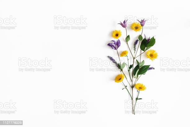 Flowers composition yellow and purple flowers on white background picture id1127776025?b=1&k=6&m=1127776025&s=612x612&h=lkx2hqws rtefdv1o9ybxl7j7 ztbqfygo9z23fm2t8=