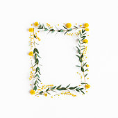 istock Flowers composition. Yellow flowers, eucalyptus branches on white background. Spring concept. Flat lay, top view 1208374640