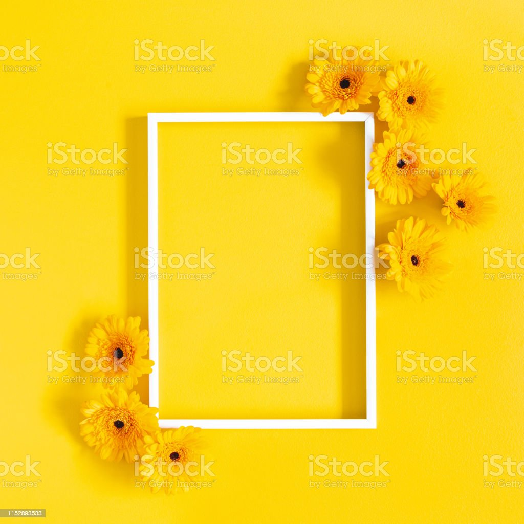 Flowers composition. Yellow gerbera flowers, photo frame on yellow background. Flat lay, top view, copy space Flowers composition. Yellow gerbera flowers, photo frame on yellow background. Flat lay, top view, copy space Above Stock Photo