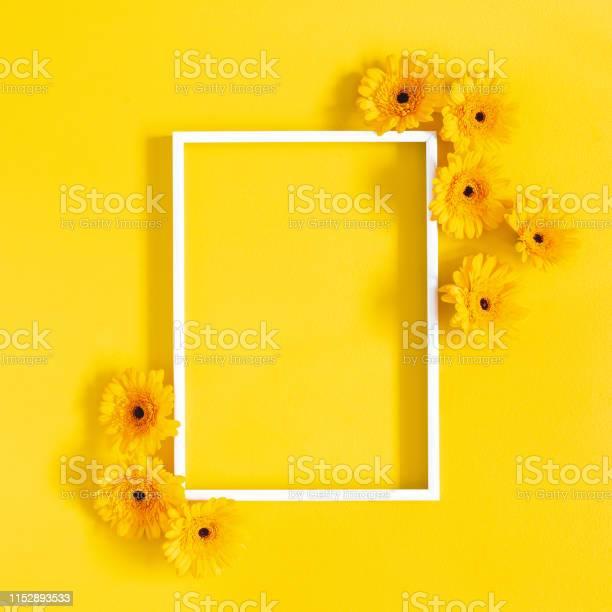 Flowers composition yellow gerbera flowers photo frame on yellow picture id1152893533?b=1&k=6&m=1152893533&s=612x612&h=av7qaxh2 w30rehfsniipipxedycqsue cj  2biu0m=
