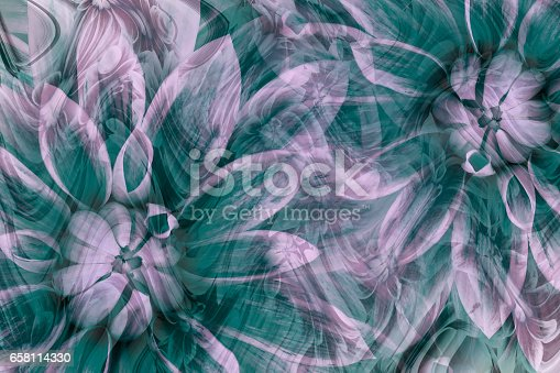 istock flowers dahlias white-turquoise-pink. flowers  background. floral collage.  abstract composition. Nature. 658114330