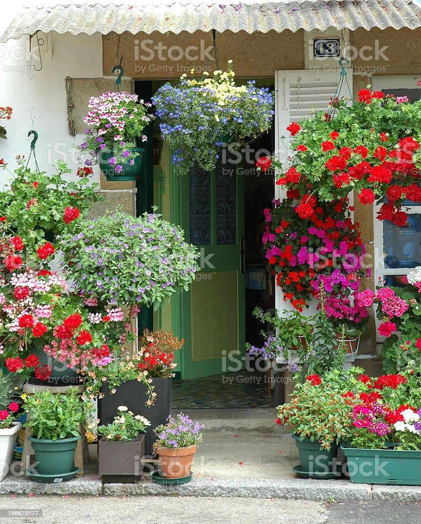 Flowers door royalty-free stock photo