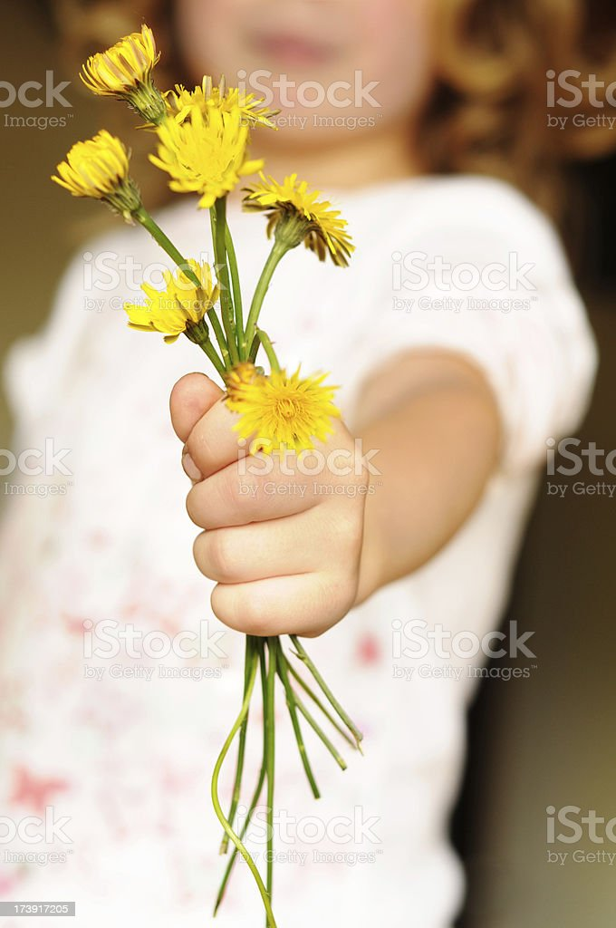 flowers for mom royalty-free stock photo
