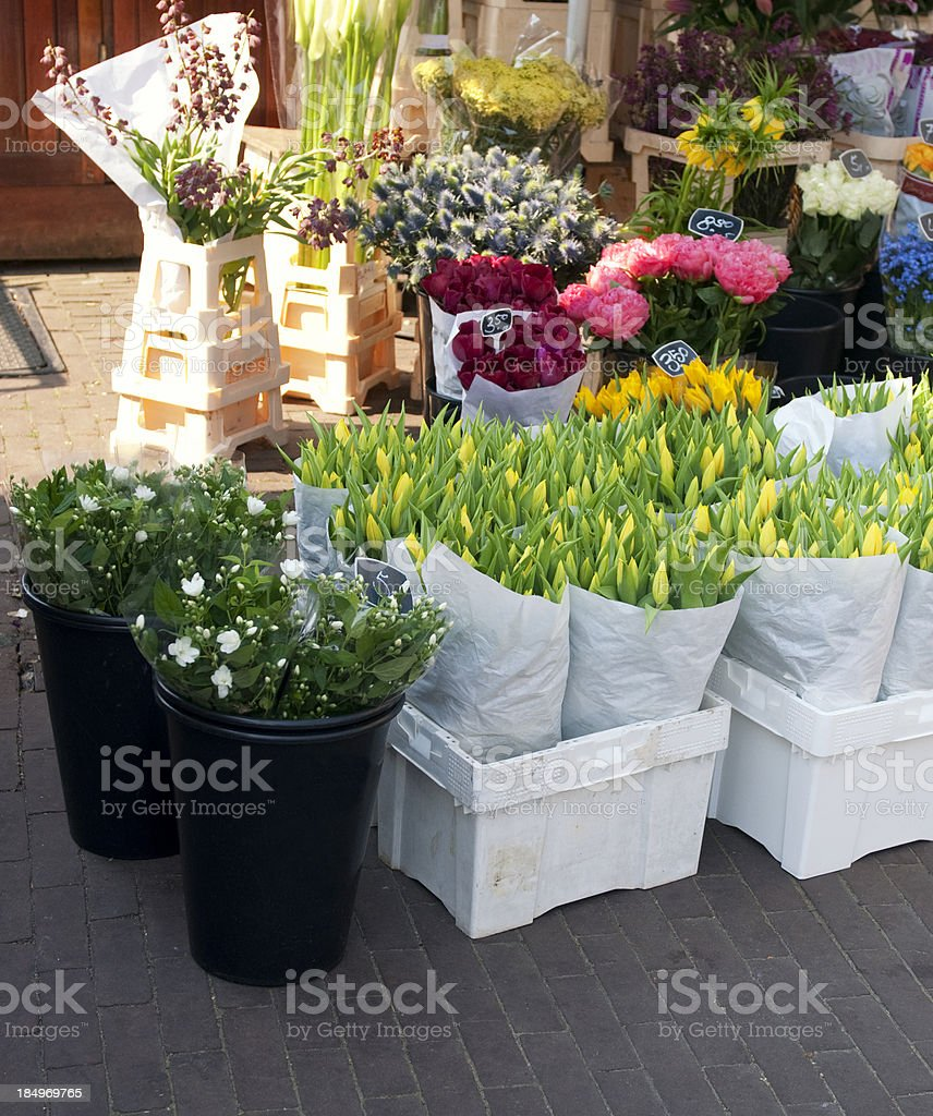 Flowers for sale in Amsterdam royalty-free stock photo