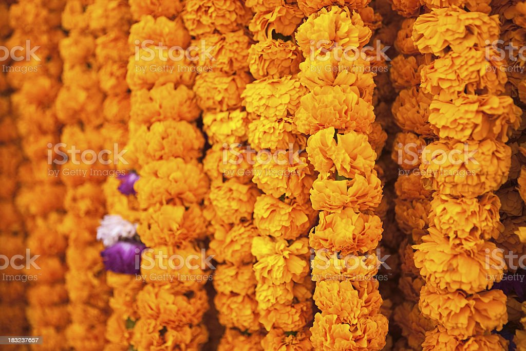 Flowers for sell, India. stock photo
