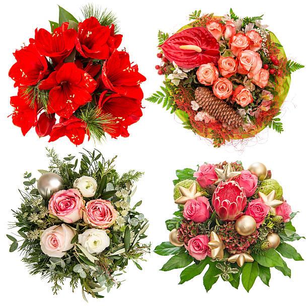 blumen für winterurlaub. rosen, belladonnalilien, protea - protea strauß stock-fotos und bilder