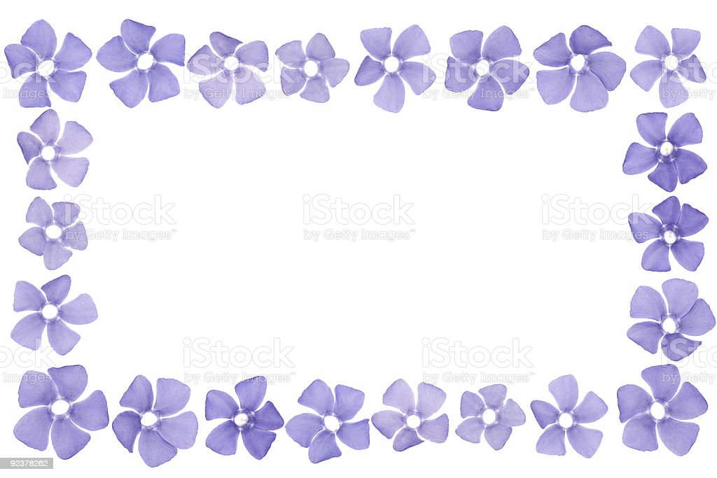 Flowers frame royalty-free stock photo