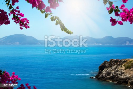 istock Flowers framing blue sea 163169557