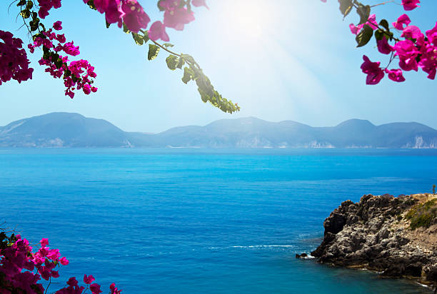 Flowers framing blue sea Pink flowers (bougainvillea) blooming at Kefalonia island, Greece, framing the blue Mediterranean Sea. Focus is on the flowers, The sea is slightly out of focuse and it may be used as copy space. mediterranean sea stock pictures, royalty-free photos & images