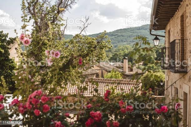 Flowers garden in horcajuelo de la sierra madrid spain picture id1143383836?b=1&k=6&m=1143383836&s=612x612&h=n5jwukbgkslccfcmm3yt9wewfsgbhcpt7umpqao6sb0=