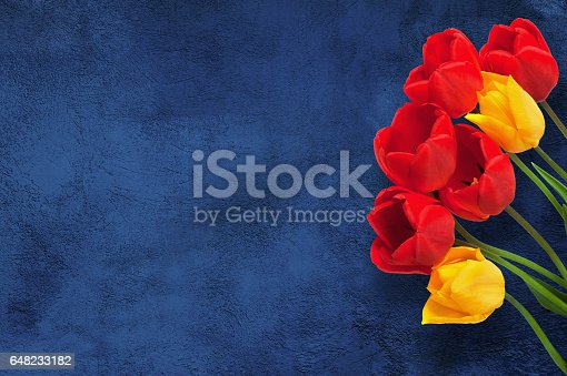 istock Flowers Greeting Card for Mother's Day, Birthday, March 8 648233182