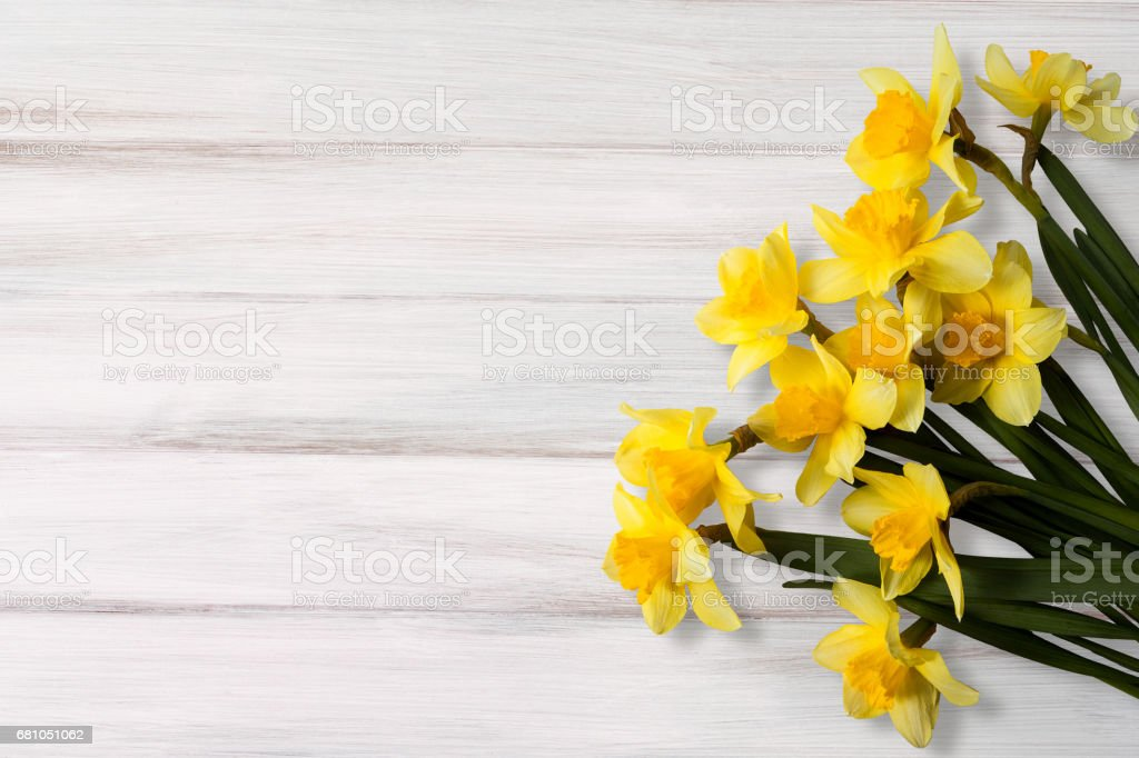 Flowers Greeting Card royalty-free stock photo