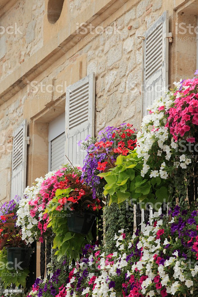 Flowers growing on a French balcony in Dordogne stock photo