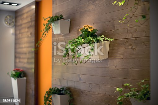 flowers in a flower pot, hanging on a wooden office wall . home interior