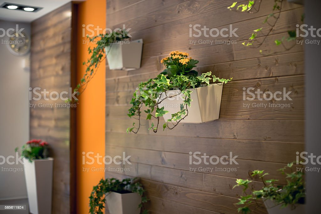 flowers hanging on a wooden office wall stock photo
