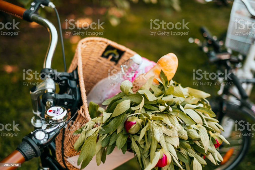 Flowers in a bicycle basket royalty-free stock photo