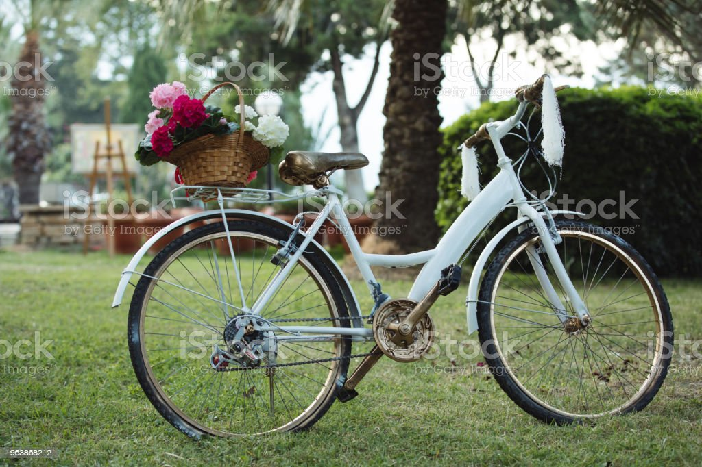 Flowers in a decorated bicycle at lawn - Royalty-free Basket Stock Photo