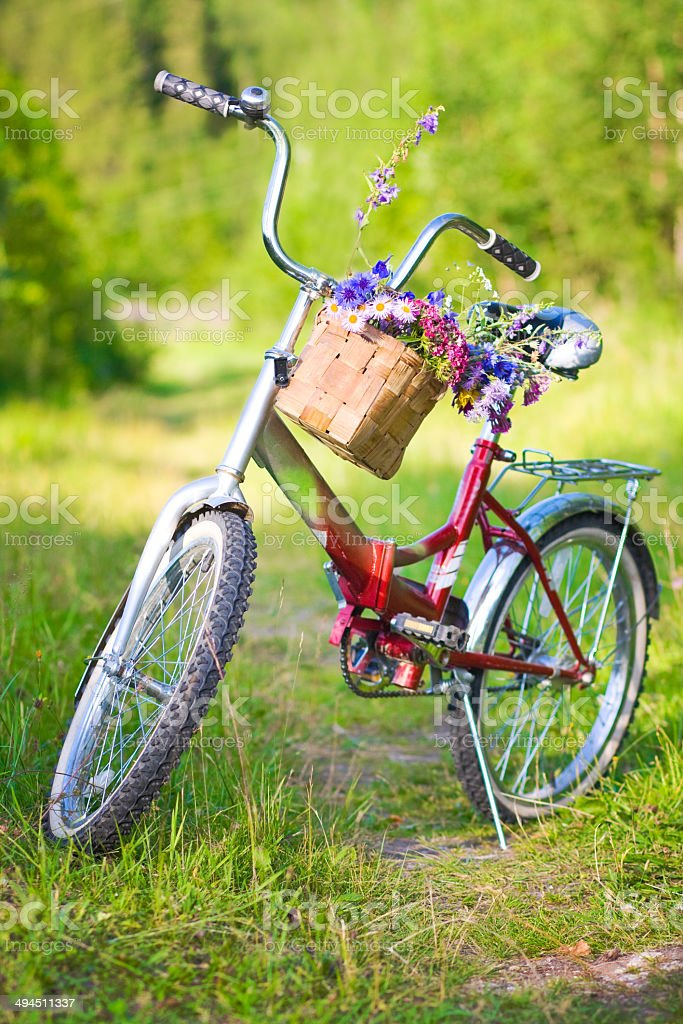 flowers in basket on bicycle royalty-free stock photo