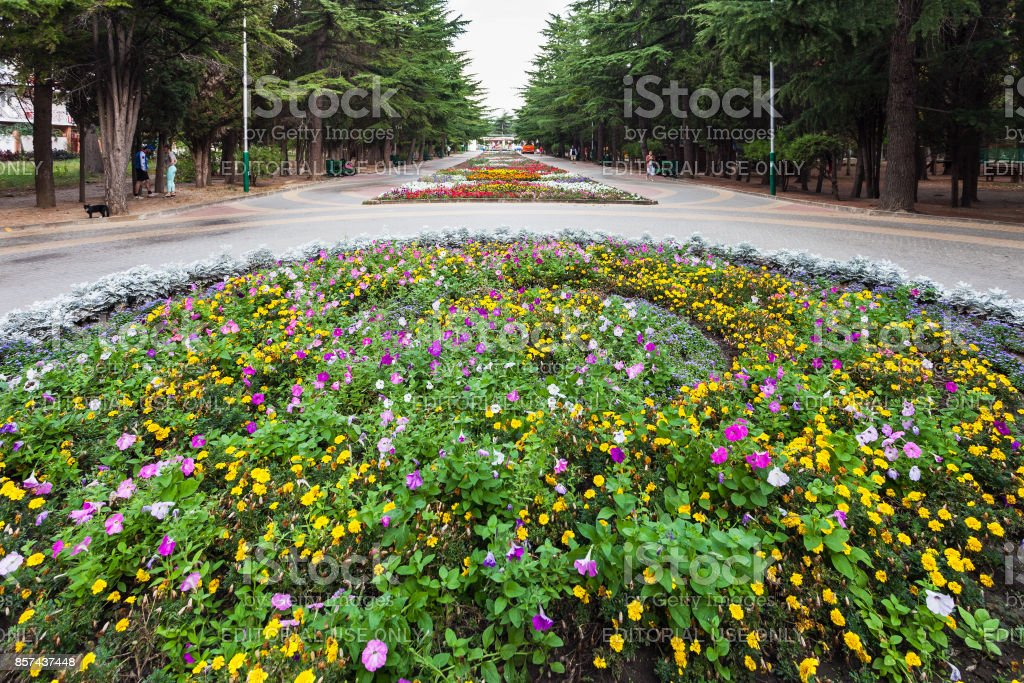 flowers in Culture and Recreation park in Alushta stock photo