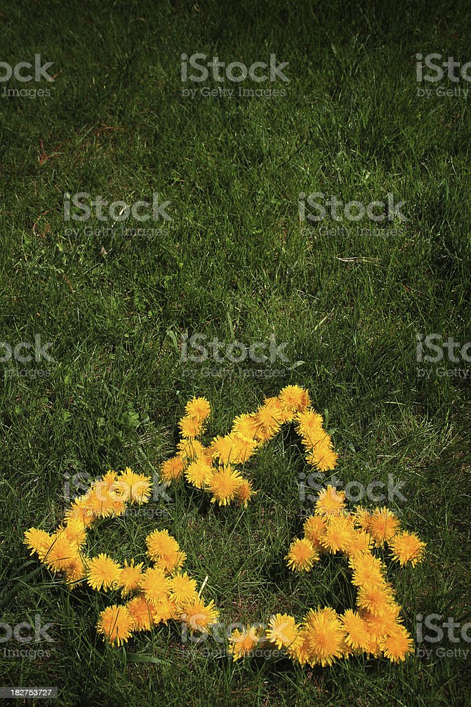 flowers in form recycling symbol royalty-free stock photo