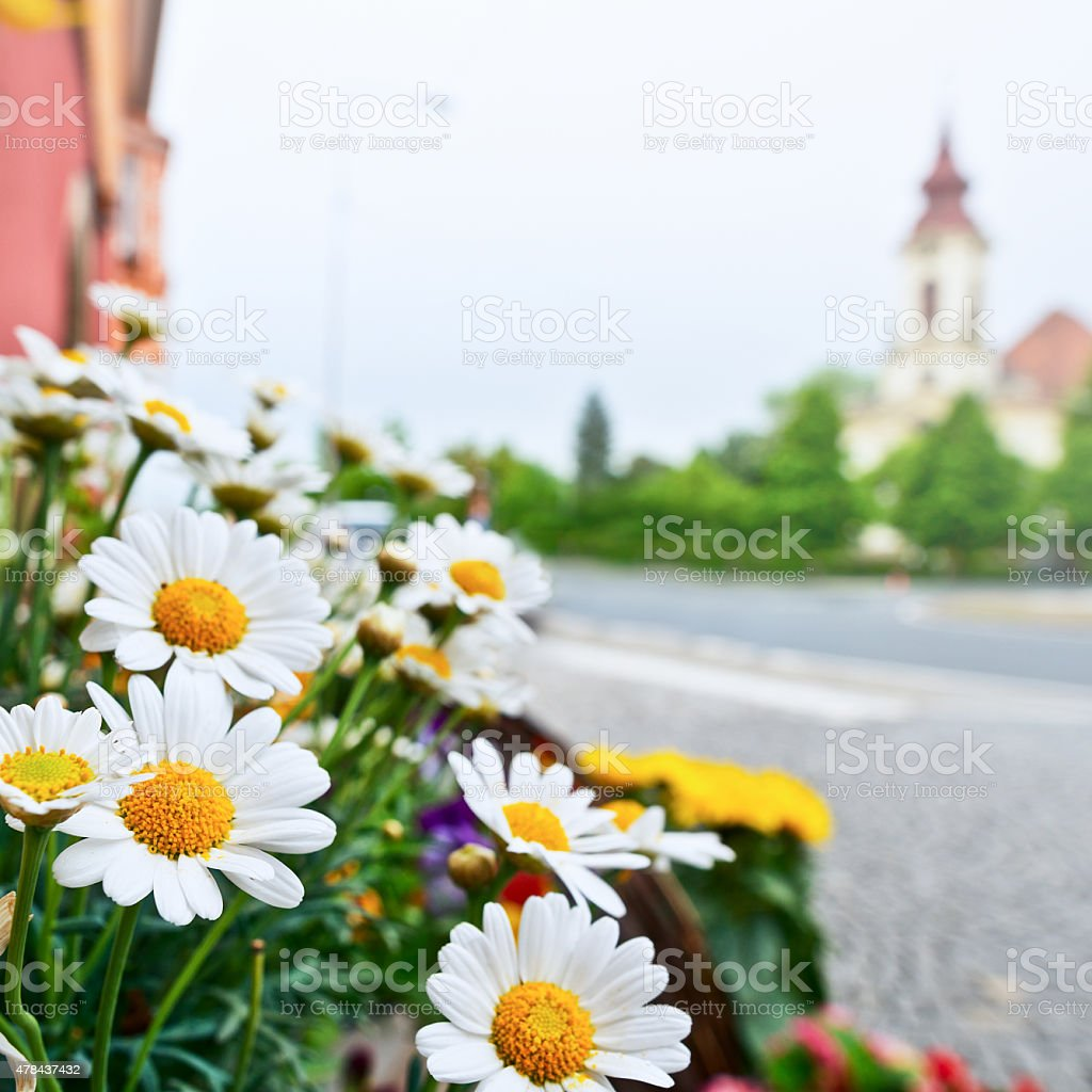 flowers in front of florist's shop stock photo