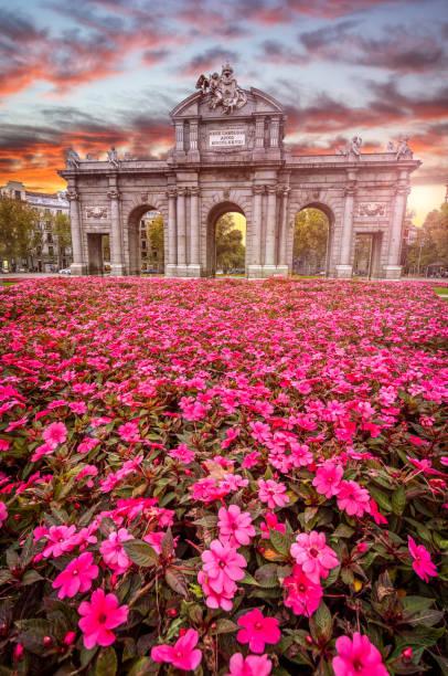 flowers in front of Puerta de Alcalá sunset vertical in Madrid, Spain stock photo