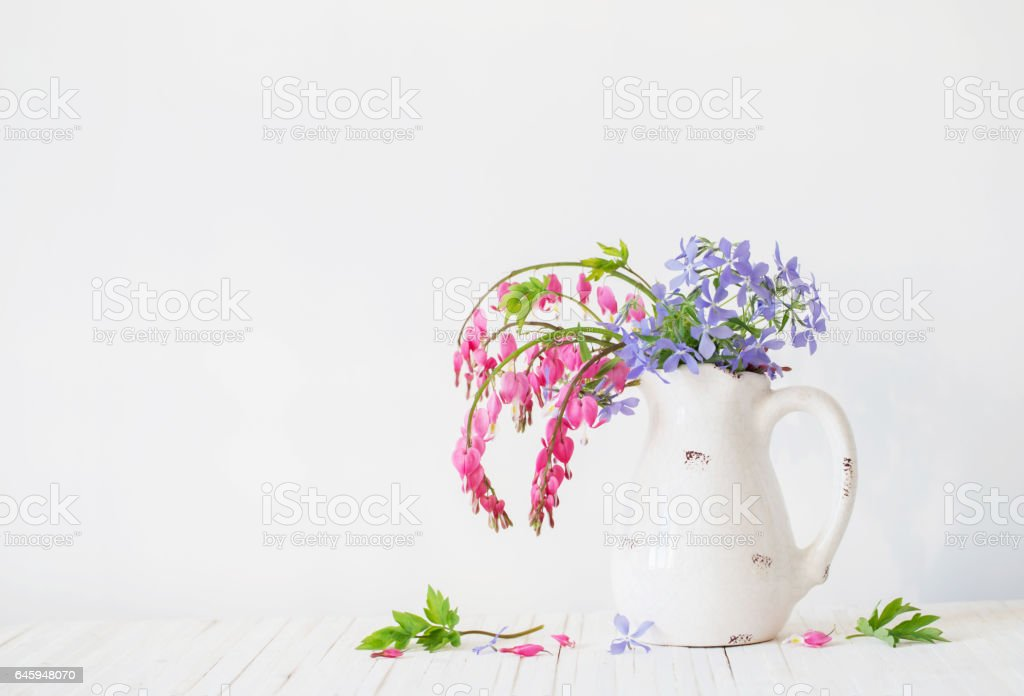 flowers in jug on white background stock photo